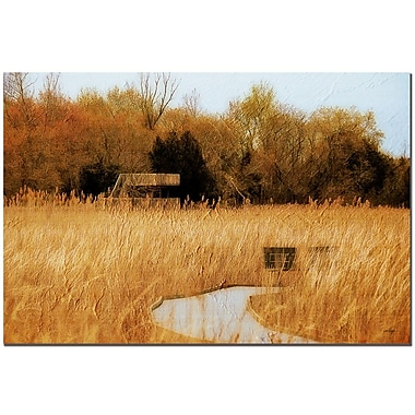 Trademark Fine Art Lois Bryan 'The Marsh in April' Canvas Art