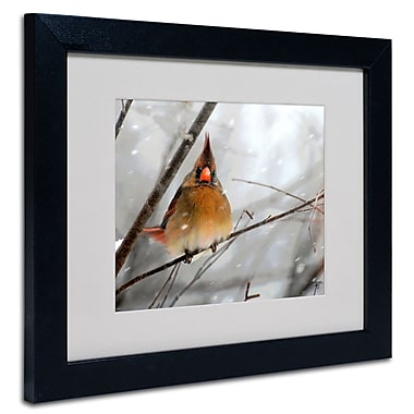 Trademark Fine Art Lois Bryan 'What the...' Matted Art Black Frame 16x20 Inches