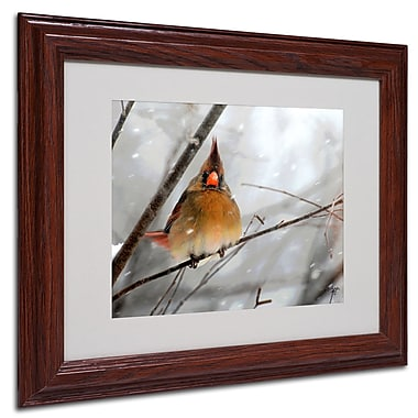 Lois Bryan 'What the...' Framed Matted Art - 16x20 Inches - Wood Frame