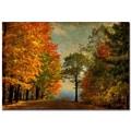 Trademark Fine Art Lois Bryan 'Autumn on the Mountain'' Canvas Art 22x32 Inches