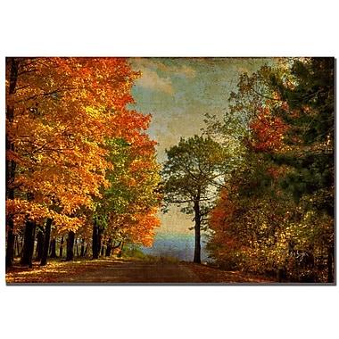 Trademark Fine Art Lois Bryan 'Autumn on the Mountain' Canvas Art 16x24 Inches