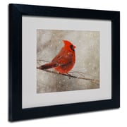 Trademark Fine Art Lois Bryan 'Cardinal In Winter' Matted Art Black Frame 16x20 Inches