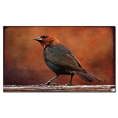 Trademark Fine Art Lois Bryan 'Cowbird in Autumn' Canvas Art 14x24 Inches