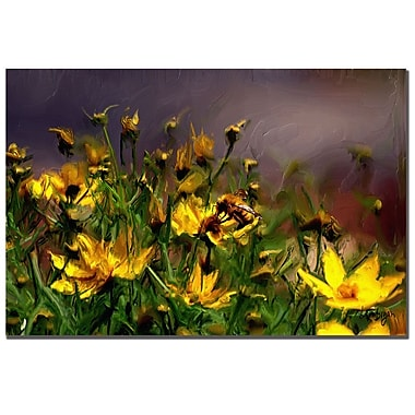 Trademark Fine Art Lois Bryan 'The Buzzing of the Bees' Canvas Art 16x24 Inches