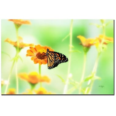 Trademark Fine Art Lois Bryan 'Farewell' Canvas Art