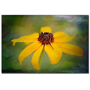 Trademark Fine Art Lois Bryan 'Textured Black-eyed Susan' Canvas Art 22x32 Inches