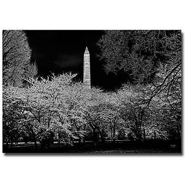Trademark Fine Art Lois Bryan 'The Washington Monument at Night' Canvas Art 30x47 Inches