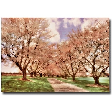Trademark Fine Art Lois Bryan 'Down the Cherry Lined Lane' Canvas Art 22x32 Inches