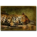 Trademark Fine Art Lois Bryan 'Wake Up Sleepyhead' Canvas Art