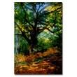 Trademark Fine Art Claude Monet, 'Bodmer Oak, Fontainebleau Forest' Canvas Art 30x47 Inches