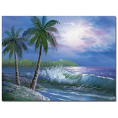 Trademark Fine Art Rio 'Moonlight in Key Largo' Canvas Art 35x47 Inches