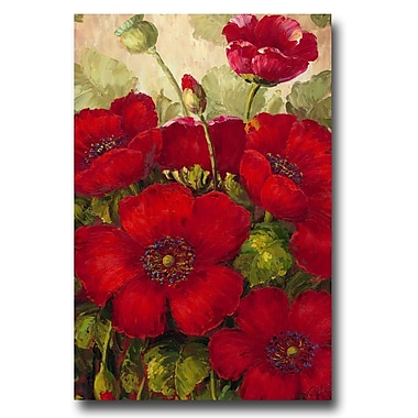 Trademark Fine Art Rio 'Poppies II' Canvas Art 16x24 Inches
