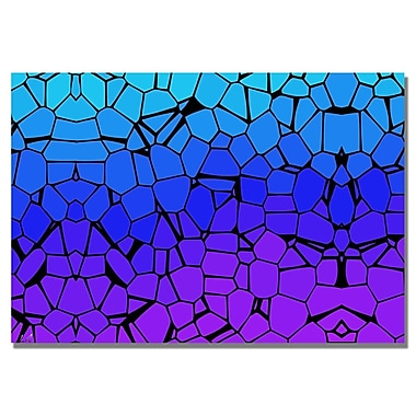 Trademark Fine Art 'Crystals of Blue and Purple' Canvas Art 30x47 Inches