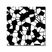 Trademark Fine Art 'Crystals of Black and White' Canvas Art 35x35 Inches