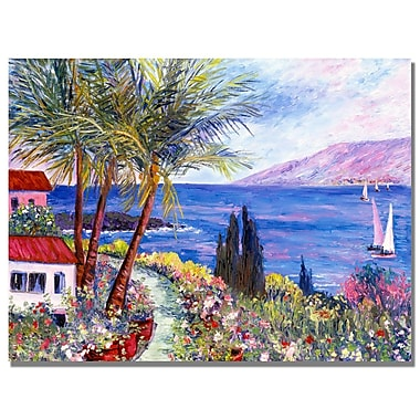 Trademark Fine Art Manor Shadian 'Hawaii Wind Surf' Canvas Art