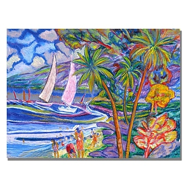 Trademark Fine Art 'Boyer Aquas Rojas' Canvas Art