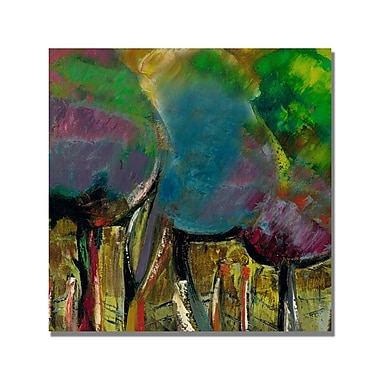 Trademark Fine Art 'Boyer Manzano de Noche' Canvas Art