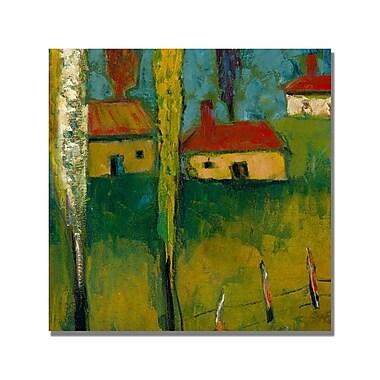 Trademark Fine Art 'Boyer Puesta de sol' Canvas Art