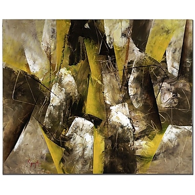 Trademark Fine Art Abstract II by Lopez Canvas Art Ready to Hang