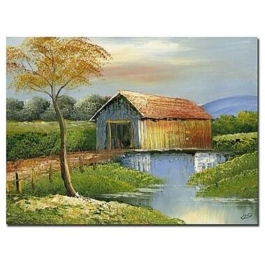 Trademark Fine Art Rio 'Old Bridge' Canvas Art 24x32 Inches