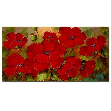 Trademark Fine Art Rio 'Poppies' Canvas Art 16x32 Inches