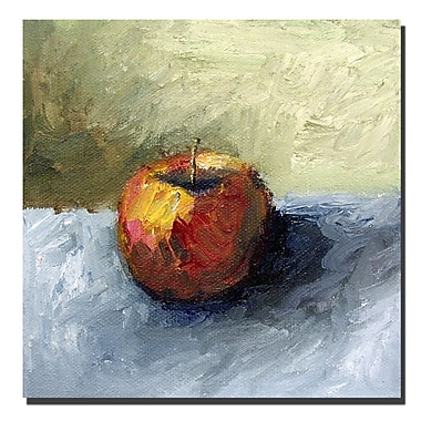 Trademark Fine Art Michelle Calkins 'Apple Still Life with Grey and Olive' Can