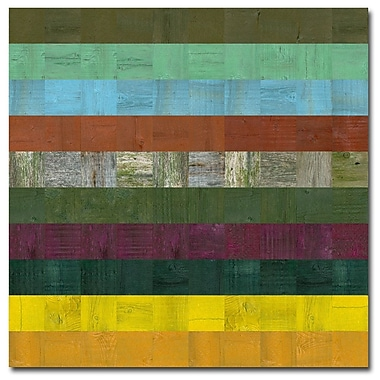 Trademark Fine Art Michelle Calkins 'Wooden Abstract V' Canvas Art, MC0139D-C2424GG