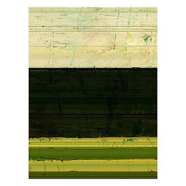 Trademark Fine Art Michelle Calkins 'Landscape II' Canvas Art