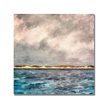Trademark Fine Art Michelle Calkins 'Dunes of Lake Michigan' Canvas Art