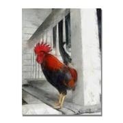 Trademark Fine Art Michelle Calkins 'Key West Rooster' Canvas Art