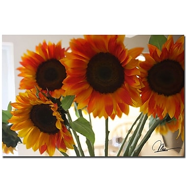 Trademark Fine Art Martha Guerra 'Sunflower IX' Canvas Art