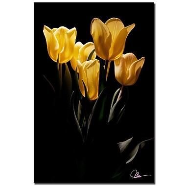 Trademark Fine Art Martha Guerra 'Yellow Blooms IV' Canvas Art
