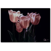 Trademark Fine Art Martha Guerra 'Pink Blooms II' Canvas Art 16x24 Inches
