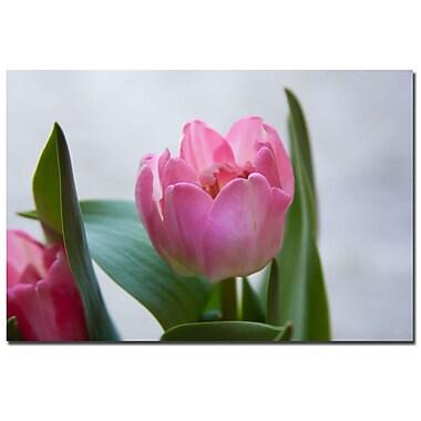 Trademark Fine Art Martha Guerra 'A Pair of Tulips' Canvas Art
