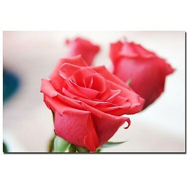 Trademark Fine Art Martha Guerra 'Rose Bouquet' Canvas Art