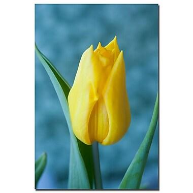 Trademark Fine Art Martha Guerra 'Yellow Tulip Bouquet' Canvas Art