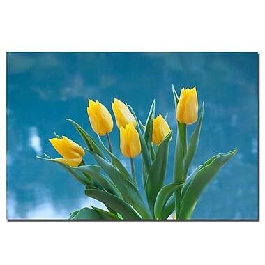 Trademark Fine Art Martha Guerra 'Yellow Tulip Bouquet II' Canvas Art