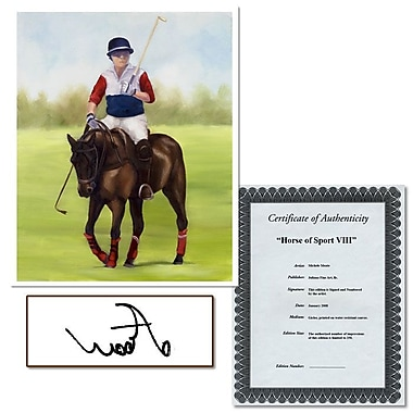 Trademark Fine Art Horse of Sport IX by Michelle Moate Stretched