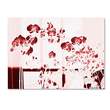 Trademark Fine Art Miguel Paredes 'Red Orchids' Canvas Art 14x19 Inches
