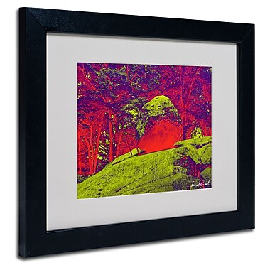 Trademark Fine Art Miguel Paredes 'Enchanged Rock I' Matted Art Black Frame 11x14 Inches