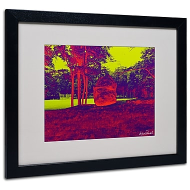 Trademark Fine Art Miguel Paredes 'Enchanted Rock II' Matted Art Black Frame 16x20 Inches