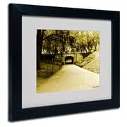 Trademark Fine Art Miguel Paredes 'Passage II' Matted Art Black Frame 11x14 Inches