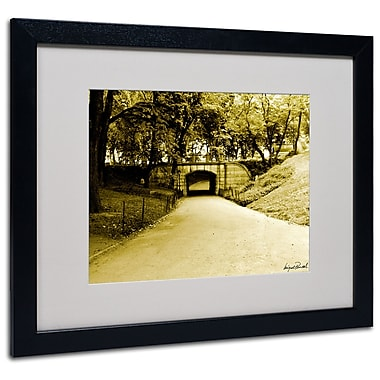 Trademark Fine Art Miguel Paredes 'Passage II' Matted Art Black Frame 16x20 Inches