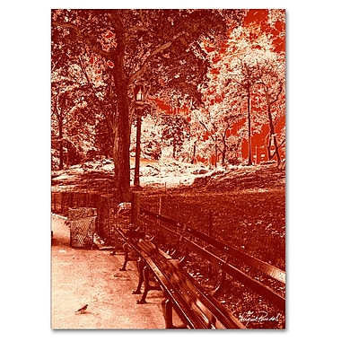 Trademark Fine Art Miguel Paredes 'Red Forest' Canvas Art 35x47 Inches
