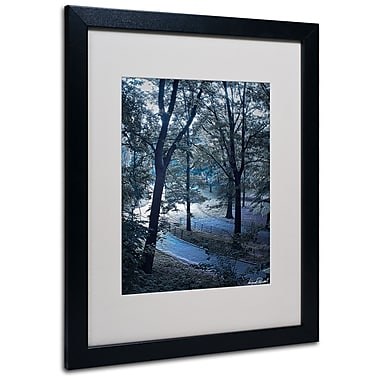Trademark Fine Art Miguel Paredes 'Snow Flakes' Matted Art Black Frame 16x20 Inches
