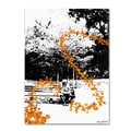 Trademark Fine Art Miguel Paredes 'Orange Butterflies' Canvas Art