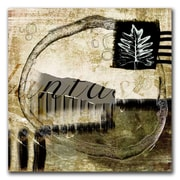 Trademark Fine Art Planta I & II Set by Miguel Paredes-Gallery Wrapped Canvas