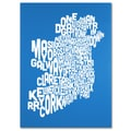 Trademark Fine Art Michael Tompsett 'SUMMER-Ireland Text Map' Canvas Art 24x32 Inches