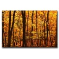 Trademark Fine Art 'Delicious Autumn' 30in. x 47in. Canvas Art