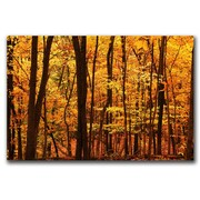"Trademark Fine Art 'Delicious Autumn' 14"" x 19"" Canvas Art"